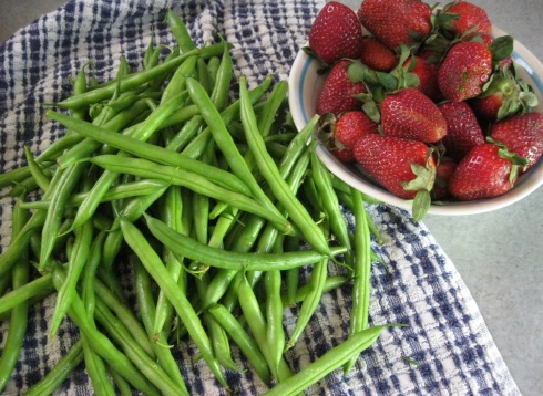Green beans and strawberries from the Forsyth Farmer's Market
